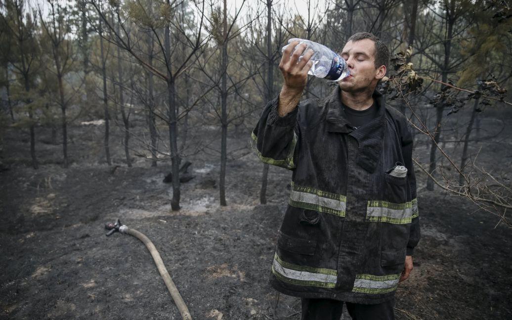 Лес превратился в пепелище / © Reuters