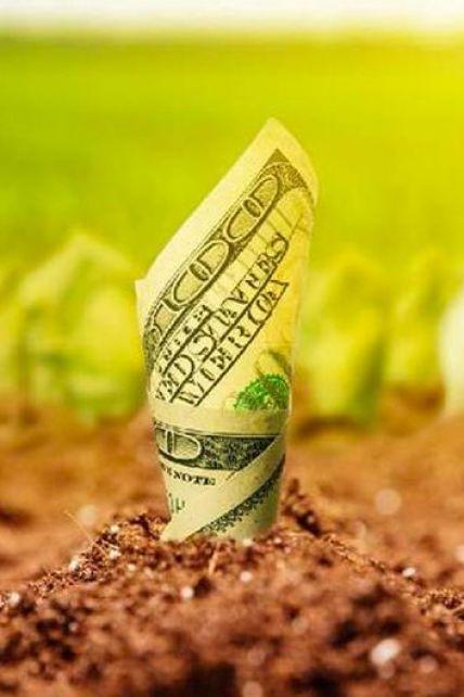 В Україні відкривається ринок землі: що варто знати