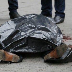 Российская политэмигрантка связала убийство Вороненкова со смертью Чуркина