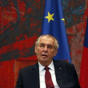 Президент Чехії назвав дві версії вибухів в Врбетіце: його звинуватили в підіграванні Росії