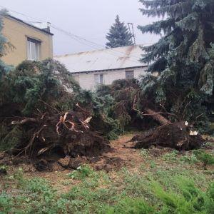 Перші жертви літньої негоди в Україні: на Сході буревій забрав життя двох людей, ще семеро в лікарні