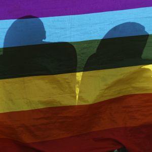 """В Угорщині заборонили """"пропаганду гомосексуалізму"""" в школах"""