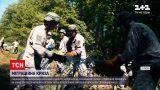 Новости мира: почти 300 нелегалов со стороны Беларуси пытались пересечь литовскую границу