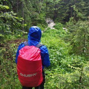 Сам знайшов маршрут: у Карпатах розшукали зниклого у горах туриста з Вінниці (фото)
