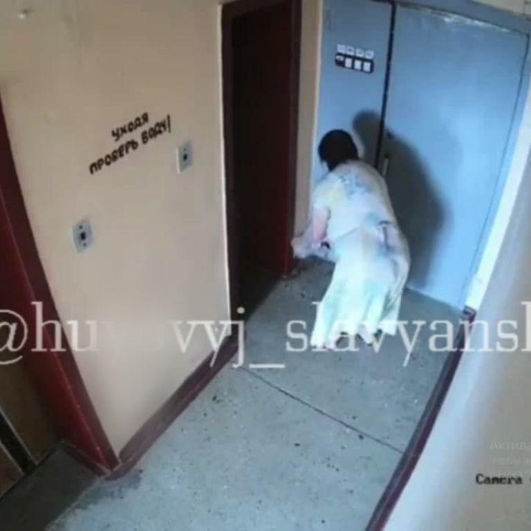 """Блискуча """"спецоперація"""": у Слов'янську жінка підкинула сусідам під двері фекалії і стала зіркою Мережі (відео)"""