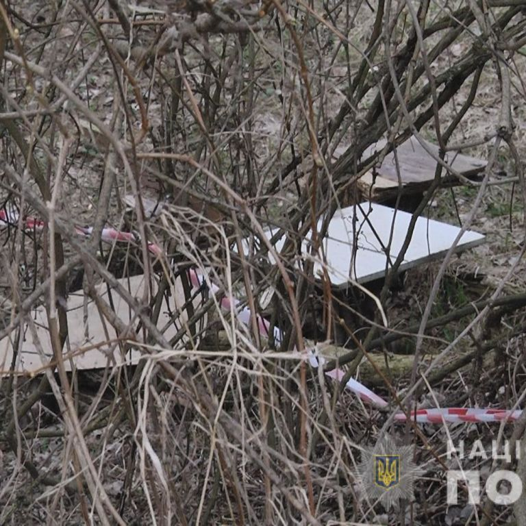 Розкидане парком у Львові розчленоване тіло належать зниклій жінці: підозрюваного у вбивстві затримали