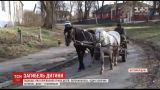 9-летний мальчик погиб, оказавшись под телегой с лошадьми, на которой перевозили доски
