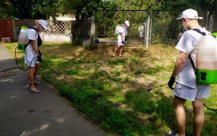 Начинает цвести амброзия: как Киев борется с опасным растительным аллергеном (видео)