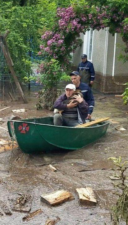 Вода з гір хлинула на городи і обійстя: на Закарпатті затопило кілька сіл