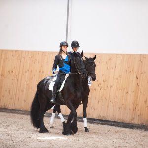 Модели в ярких нарядах и профессиональные жокеи: Жан Грицфельдт представил коллекцию в конном клубе