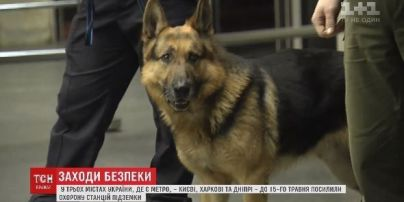Нацгвардия, собаки и постоянные оговорки. В киевском метро усилили меры безопасности