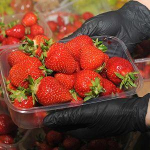 В Україні різко подешевшала полуниця: які ціни у різних регіонах