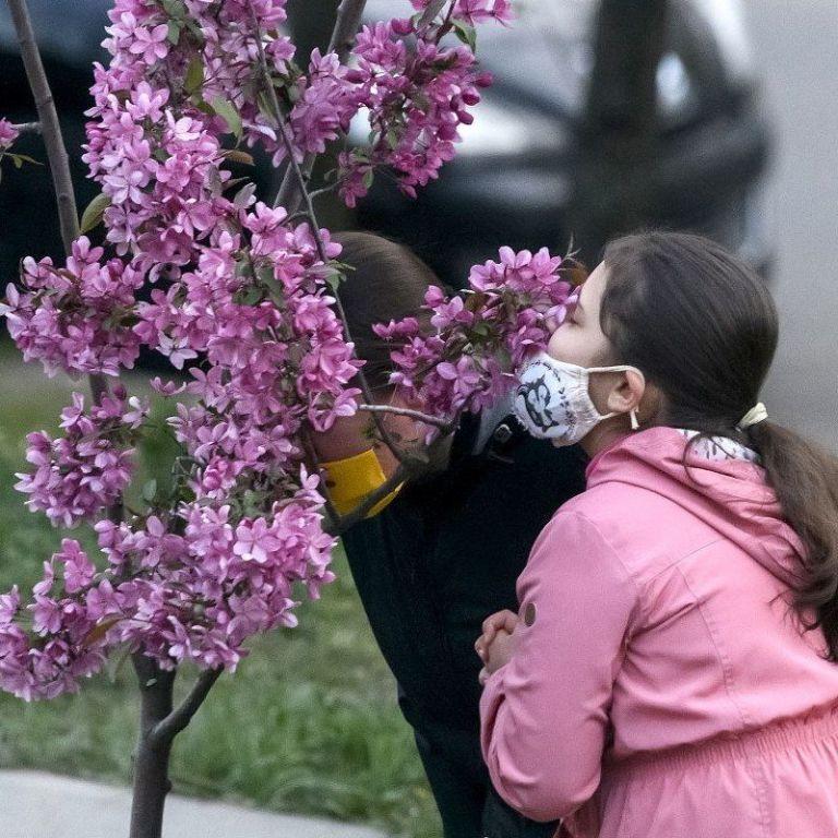 Топ-3 места в Украине, где можно насладиться весенним цветением и сделать фото: детали