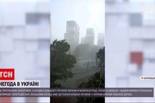 Новости Украины: в Харькове ветер повалил деревья, а на Закарпатье на дорогу сошли селевые потоки