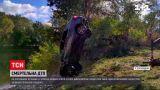 Новости Украины: в Полтавской области легковушка с четырьмя людьми слетела в реку