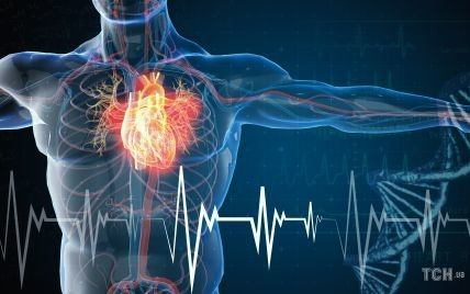Ніколи не пізно: що потрібно змінити в житті, щоб зберегти здорове серце і судини