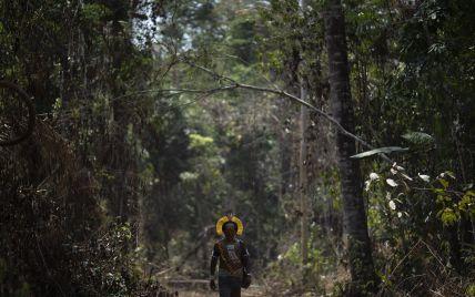 Після удару астероїда, що вбив динозаврів, утворилися тропічні ліси Амазонки - науковці