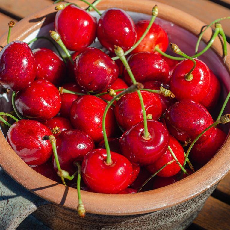 Сезон черешні: вартість ягід в Україні б'є рекорди