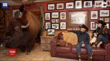 Техаське подружжя кілька років виховує у своєму домі велетенського бізона