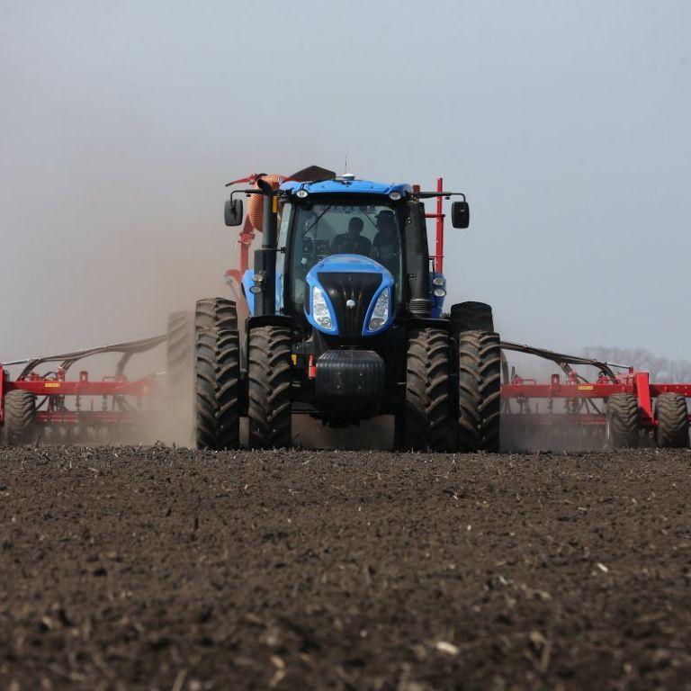 Что уничтожила погода на полях и какая будет цена: прогнозы и оценки украинских фермеров