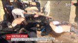 Стали известны результаты вскрытия погибших в Сирии