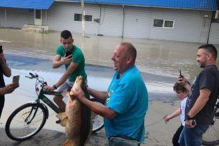 Паводок у Чернівцях: на підтопленому Калинівському ринку чоловік зловив велику рибу