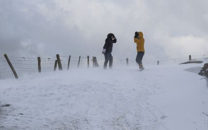 В Укргідрометцентрі розповіли, як сильні морози в Україні вплинули на майбутній урожай
