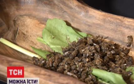 Сушені бджоли та бур'яни: як смакують страви з дивними інгредієнтами