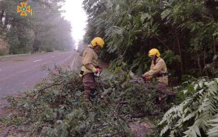 На півдні України негода валила дерева, а море після зливи вкрилося брудною піною