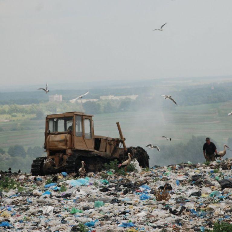 Харчові чи неорганічні відходи. Що найчастіше викидають українці та як зменшити обсяги сміття