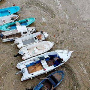 Мраморное море у берегов Турции покрылось слизью: назвали причины катастрофы