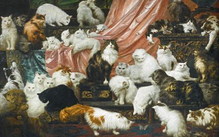 Топ-7 позитивных новостей недели: Бонд, мужская красота и дорогие котики