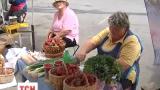 Жители Василькова паникуют о состоянии экологии в своем городе