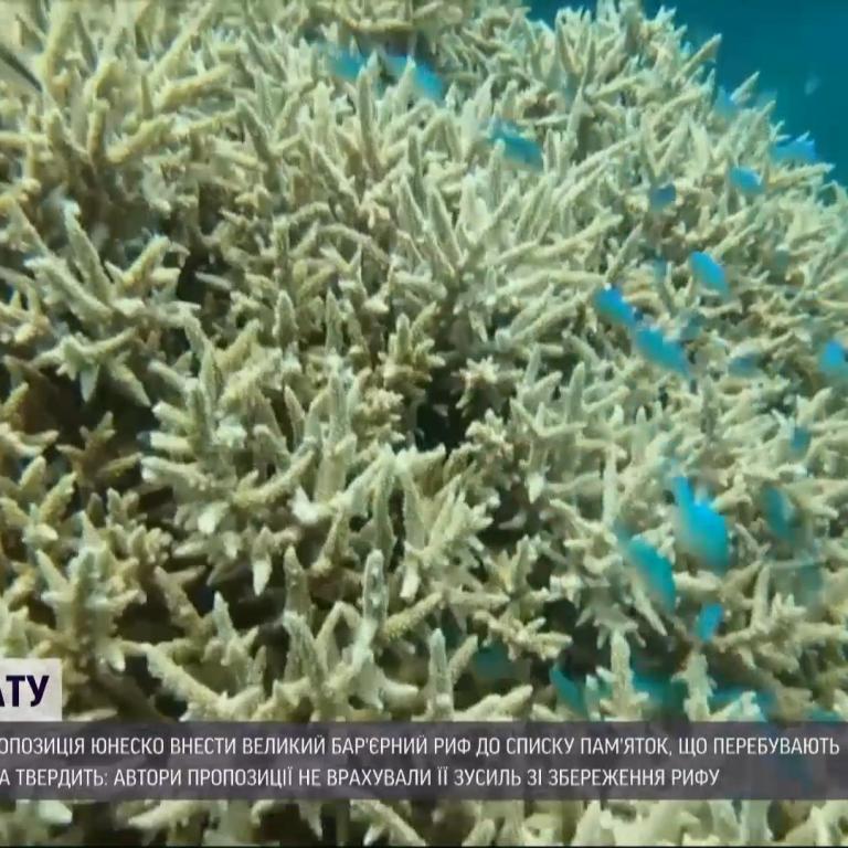 Австралия разругалась с ЮНЕСКО из-за рифа, который страдает от изменений климата