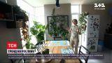 Новини України: оранжерея вдома – ТСН навідалася в гості до власниць сотень вазонів із рослинами