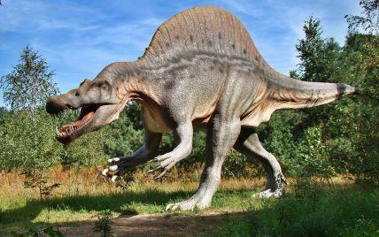 Учені пояснили, чому ніколи не вдасться відродити динозаврів