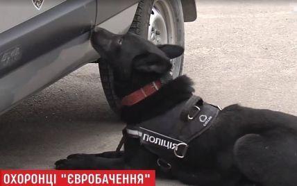 """Украинские собаки-охранники прошли жесткий кастинг перед """"Евровидением"""""""