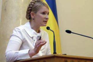 Тимошенко знайшла альтернативу газу: деревину та бур'ян