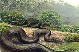 У Колумбії знайшли рештки доісторичної змії, яка могла проковтнути корову