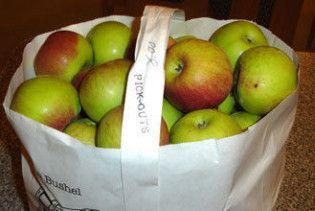 Україна вийшла на четверте місце у світі з виробництва яблук