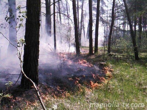 Пожежа на Київщині