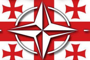 Грузія хоче увійти до НАТО без ПДЧ