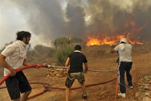 Грецію охопили лісові пожежі