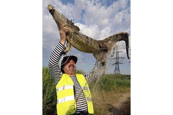 В одеському ставку зловили крокодила