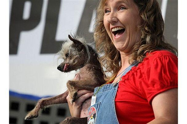 Обрано найпотворнішого собаку в світі