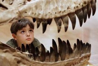 В Австралії знайшли останки трьох динозаврів