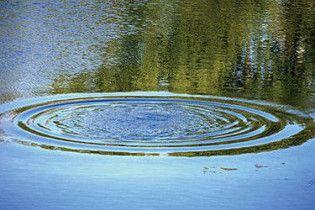 В одну із найбільших річок Великобританії потрапив ціанід