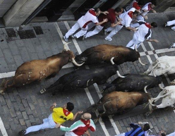Забіги з биками в Памплоні