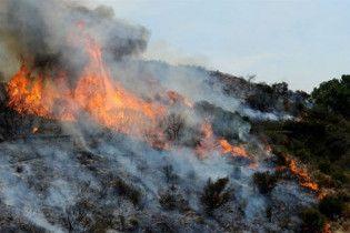 Ліс у Каліфорнії підпалив тринадцятирічний підліток