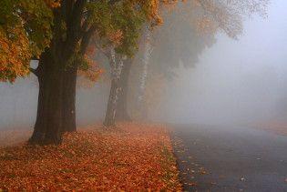 Погода в Україні на вівторок, 10 листопада